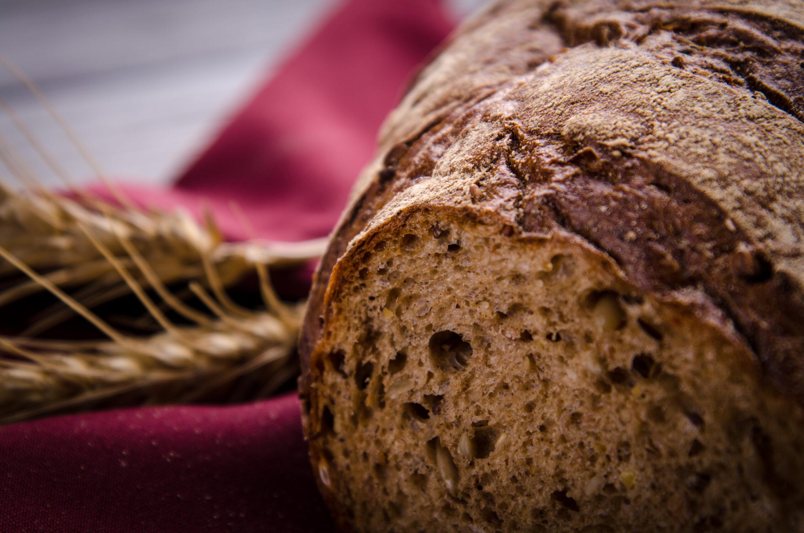 Користь хліба